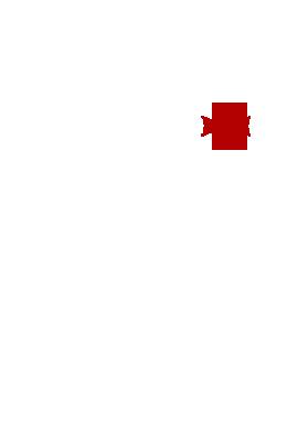 GS_5 دفتر وکالت و موسسه حقوقی جورجیا سرویس گرجستان